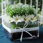 Benefits of wheatgrass